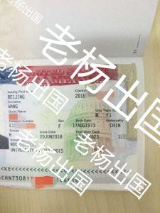 45岁W女士美国留学签证一次通过!大龄留学不再只是一个梦